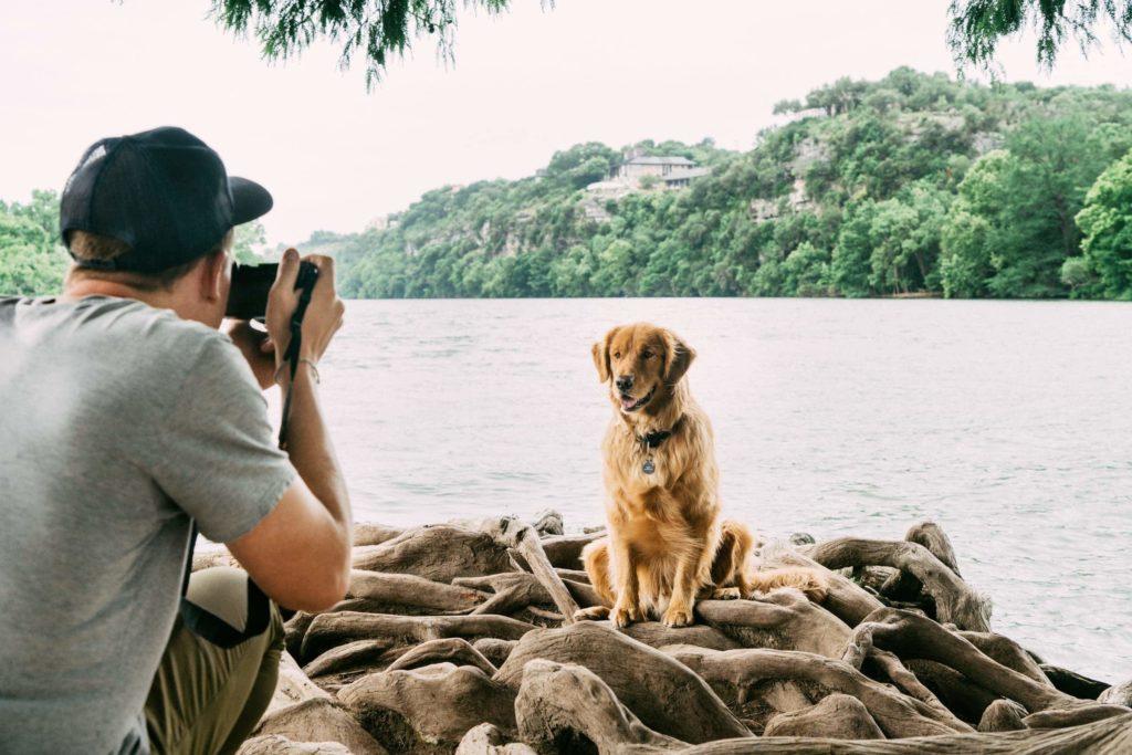 Photographer taking photo of dog.